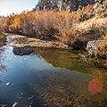West Little Owyhee Wild and Scenic River (27091764597).jpg