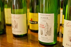Wines from Léon Beyer (6711042967).jpg