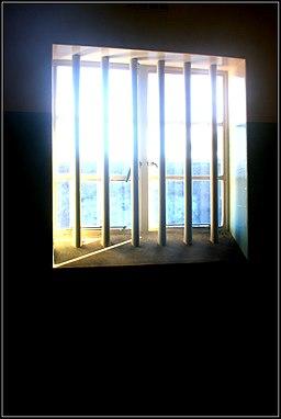 Wisdom Window