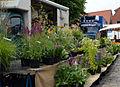 Wochenmarkt Garding Blumenstand.JPG