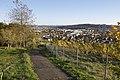 Wolfesberg - panoramio (6).jpg