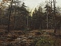Woodland Scene by William Bliss Baker, 1885.jpg