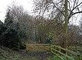 Woodland off Cliff Lane - geograph.org.uk - 1081884.jpg