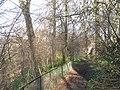 Woodland path, Uphall - geograph.org.uk - 1220789.jpg