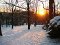 Wuppertal Nordpark 0004.jpg