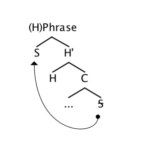 Antisymmetry - X-bar syntactic tree showing movement of the specifier (S) relative to the head (H) and complement (C)