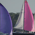 Yachts racing during Round the Island Race 2010 3.jpg