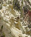 Yellow rocks in Grand Canyon of the Yellowstone-750px.JPG