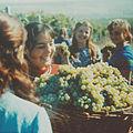 Youth on the grape harvest (1972). (8591084407).jpg
