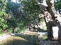 Yukarı Çağlar (Navahı) - Serper (Navahı bükü) (2) - panoramio.jpg