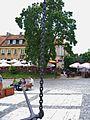 Zespół urbanistyczno-architektoniczny i krajobrazowy Sandomierza woj swietokrzyskie jpradun.JPG