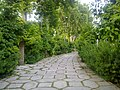 'Afif Abad Garden - panoramio (4).jpg