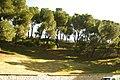 ® S.D. MADRID PARQUE DEL OESTE - PASEO DEL REY - panoramio (6).jpg