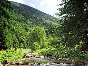 Western Beskids - Image: Čeladenka (CZE) the river