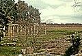 Ναός Αρτέμιδος.jpg