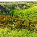 Буртинская степь - panoramio (6).jpg