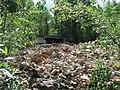 Бывшая котельная, в-ч 75270 Military object near Eleja - panoramio.jpg