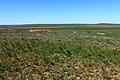 Вид с Пьяной Горы, с отметки 282 м в северном направлении - panoramio.jpg