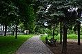 Володимирська гірка. Фото 3.jpg