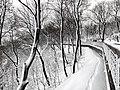 Володимирська гірка взимку.jpg