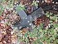Гей Б. В. надгробие.jpg