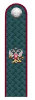 Действительный гос. советник РФ 3 класса ФНС.png