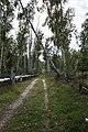 Дорога вдоль труб - Pipe and path - panoramio (1).jpg