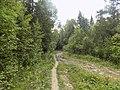 Иремель. Дорога в Ларкино ущелье.jpg