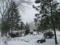 Кольцовский сквер. - panoramio (1).jpg