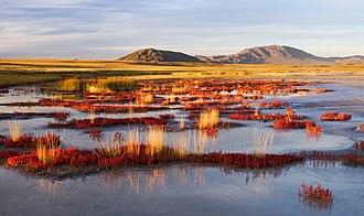 Mammoth steppe - Image: Озеро Дус Холь вечером. Тес Хемский кожуун