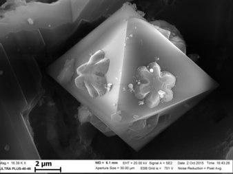 Оксиды на поверхности образца, полученного при СВС Ni-Al-B. 3.tif