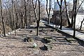 Парк «Кирилівський гай» IMG 4066.jpg