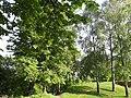 Парк Огнівщина в Ромнах.jpg