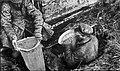 Работники ОГПУ извлекают из ямы спрятанное зерно (1932).jpg