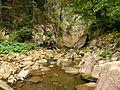Р. Кам'янка - panoramio (1).jpg