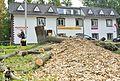 Уничтожение живых деревьев в жилой зоне в центре поселения Кокошкино по решению правительства Москвы.jpg