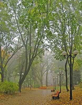 У Києві дощ 02.jpg