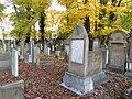 בית הקברות היהודי בקרקוב - קברים.jpg