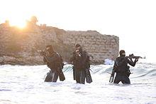 Counter-terrorism - Wikipedia