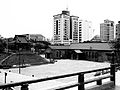 西本願寺(鐘樓、樹心會館)05.jpg