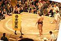 骨太家族 2010 相撲 (4893679191).jpg