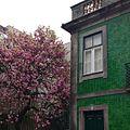 -Porto (24810752621).jpg