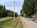 031 stop Neue Straße (northbound platform).png