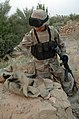 050814-A-AB374-028 - Iraqi soldier examines flak vest that was found outside of a house during a patrol in Rawah, Iraq.jpg