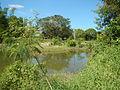 07976jfPampanga River banks Candelaria Boats Fish Delta Bulacan Roadsfvf 19.JPG