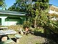 09556jfAlexis G. Santos National High School Liciada, Bustos Bulacanfvf 03.jpg