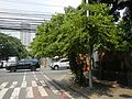 09951jfMabini Street Remedios Street Bike Lanes Buildings Malate Manilafvf 01.jpg