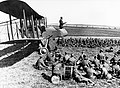 100 years of the RAF MOD 45163632.jpg