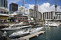 12-metre class America's Cup sailboats, Auckland - 1120.jpg