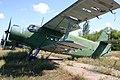 14 Yellow Antonov An.2 (7724398200).jpg